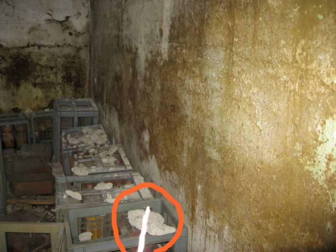 Ectoplasmic rod captured on camera at haunted location